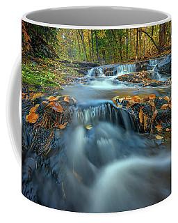 Coffee Mug featuring the photograph Autumn Cascade In Vaughan Woods by Rick Berk