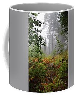 Autumn Fog  Coffee Mug