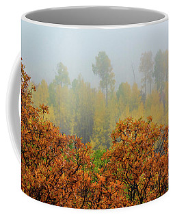 Coffee Mug featuring the photograph Autumn Foggy Day by John De Bord