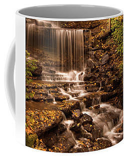 Coffee Mug featuring the photograph Autumn Foliage At West Milton by Dan Sproul