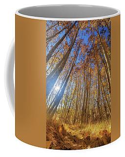 Autumn Giants Coffee Mug