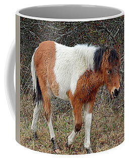 Autumn Glory N2bhs-ap On Assateague Island Coffee Mug