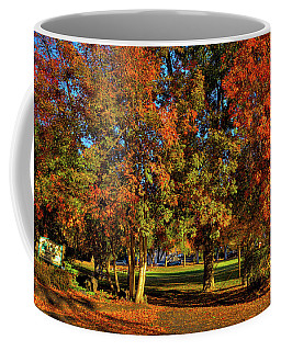 Coffee Mug featuring the photograph Autumn In Reaney Park by David Patterson