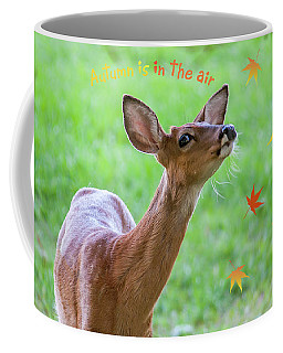 Autumn Is In The Air Coffee Mug
