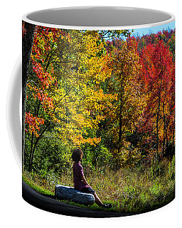Autumn Leaves In The Catskill Mountains Coffee Mug