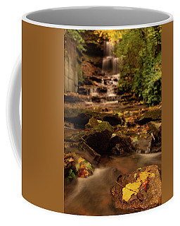 Coffee Mug featuring the photograph Autumn Leaves West Milton Waterfall by Dan Sproul