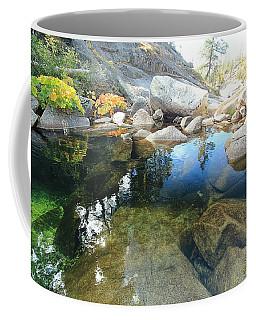 Coffee Mug featuring the photograph Autumn Liquid Dreamscape by Sean Sarsfield
