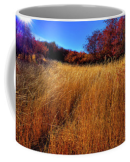 Coffee Mug featuring the photograph Autumn Path by David Patterson