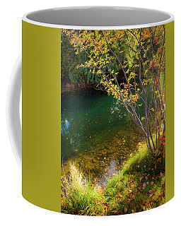 Coffee Mug featuring the photograph Autumn Pond by Mark Mille