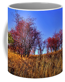Coffee Mug featuring the photograph Autumn Sun by David Patterson