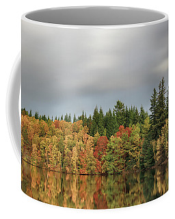 Coffee Mug featuring the photograph Autumn Tree Reflections by Grant Glendinning