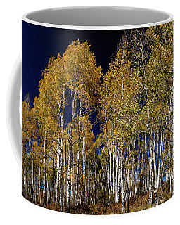 Coffee Mug featuring the photograph Autumn Walk In The Woods by James BO Insogna