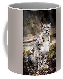 Autumnalleopard Coffee Mug