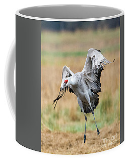 Awkward Landing Coffee Mug