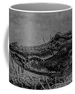 B And W Gator Coffee Mug