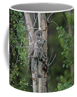 Coffee Mug featuring the photograph B18 by Joshua Able's Wildlife