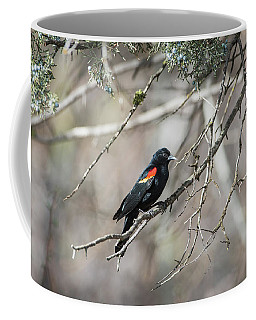 Coffee Mug featuring the photograph B26 by Joshua Able's Wildlife