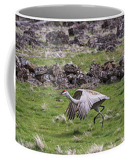 Coffee Mug featuring the photograph B27 by Joshua Able's Wildlife