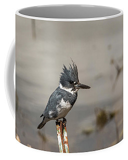 Coffee Mug featuring the photograph B31 by Joshua Able's Wildlife