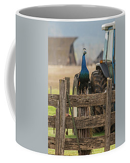 Coffee Mug featuring the photograph B33 by Joshua Able's Wildlife