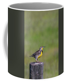 Coffee Mug featuring the photograph B39 by Joshua Able's Wildlife