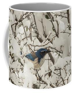 B44 Coffee Mug