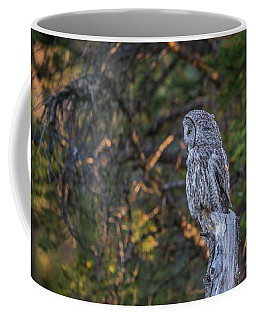 Coffee Mug featuring the photograph B46 by Joshua Able's Wildlife