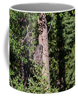 Coffee Mug featuring the photograph B50 by Joshua Able's Wildlife