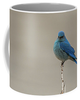Coffee Mug featuring the photograph B52 by Joshua Able's Wildlife