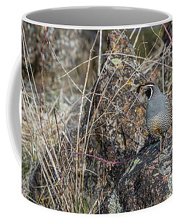 Coffee Mug featuring the photograph B53 by Joshua Able's Wildlife