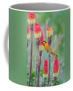 Coffee Mug featuring the photograph B59 by Joshua Able's Wildlife