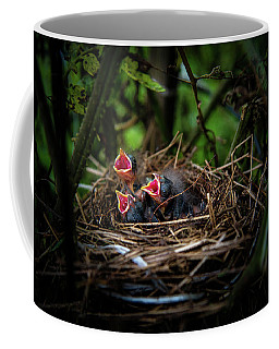 Coffee Mug featuring the photograph Baby Birds by Chrystal Mimbs