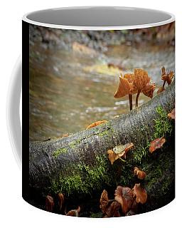 Backlit Fungi Coffee Mug