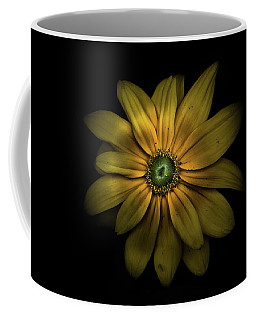 Backyard Flowers 34 Color Version Coffee Mug
