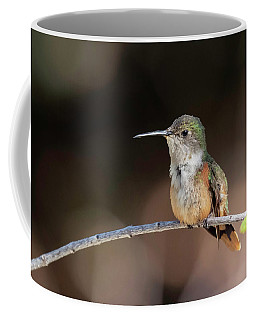 Bahama Woodstar Coffee Mug
