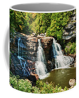 Balckwater Falls - Wide View Coffee Mug