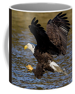 Coffee Mug featuring the photograph Bald Eagle Fishing On The James River by Lori Coleman