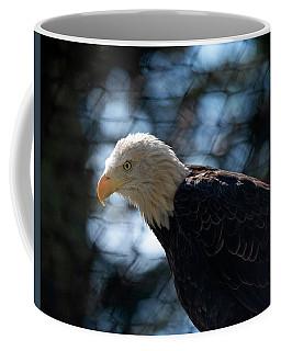 Bald Eagle Grandfather Mountain Coffee Mug