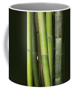Bamboo Stalk 4057 Coffee Mug