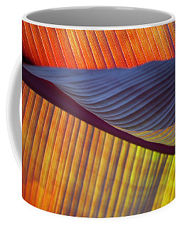 Coffee Mug featuring the photograph Banana Leaf 8613 by Mark Shoolery