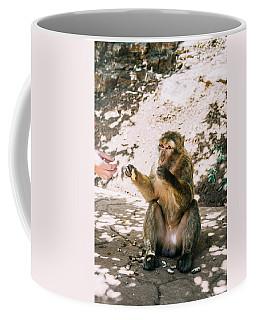 Barbary Macaque Eating Peanuts Coffee Mug