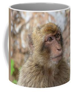 Barbary Macaque Of Gibraltar Coffee Mug