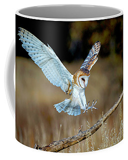 Barn Owl Landing Coffee Mug