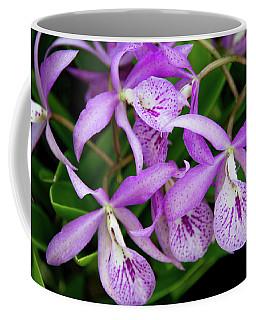 Bc Maikai 'louise' Orchid Coffee Mug