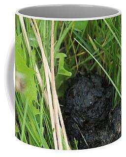 Coffee Mug featuring the photograph Bear Scat by Ann E Robson