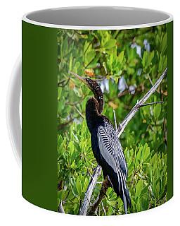 Beautiful Anhinga Coffee Mug