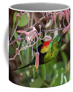 Beautiful Sunbird Coffee Mug