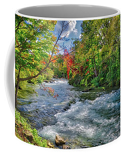 Coffee Mug featuring the photograph Beauty Before The Falls by Lynn Bauer
