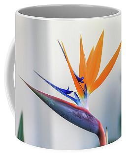 Beauty In Paradise Coffee Mug