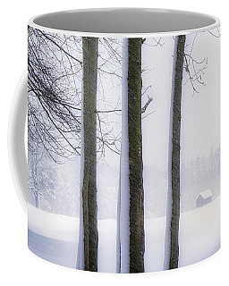 Coffee Mug featuring the photograph Beauty Without Color by Edmund Nagele